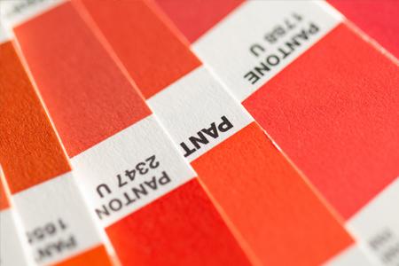 huisstijl kleuren